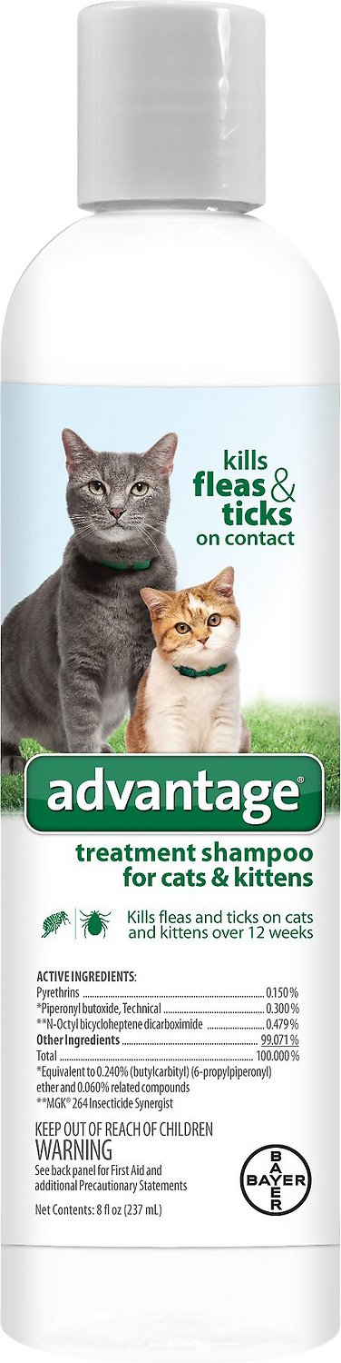 Advantage Flea & Tick Treatment Shampoo for Cats & Kittens, 8-oz bottle