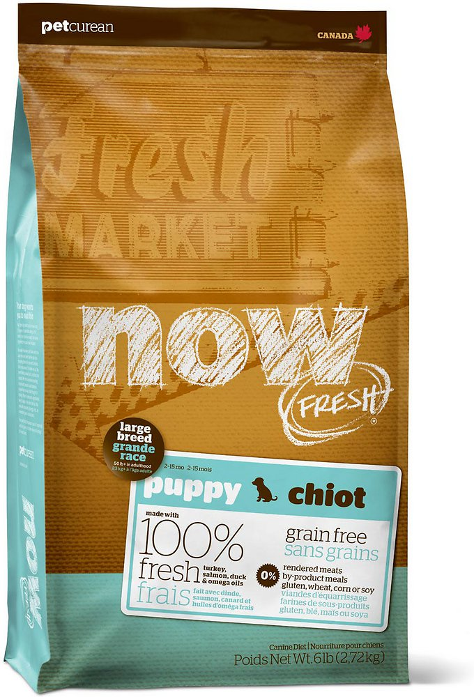 Petcurean Dog Now Fresh Grain-Free Large Breed Puppy Recipe Dry Dog Food