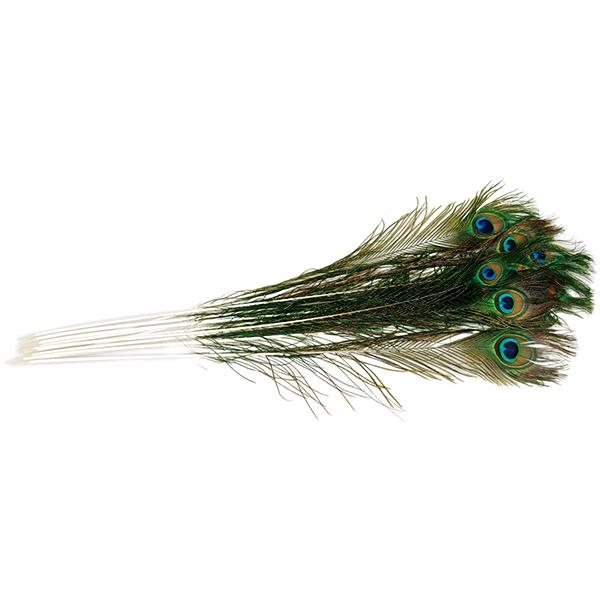 Vee Natural Peacock Feather Teaser Cat Toy