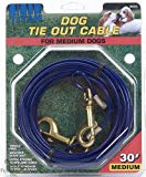 Coastal Pet Cable Tie Out with Brass, Medium 30-ft