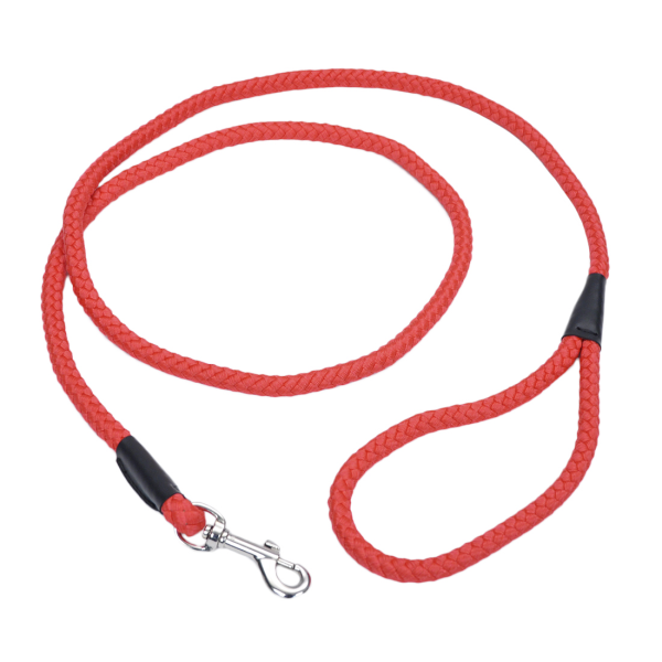 Coastal Pet 1In Training Lead - Red