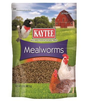 Kaytee Meal Worms