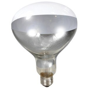 Heat Lamp Bulb for Brooder Reflector - Clear 250w