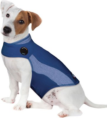 ThunderShirt Anxiety & Calming Solution for Dogs, Blue Polo
