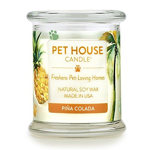 One Fur All Pina Colada Candle