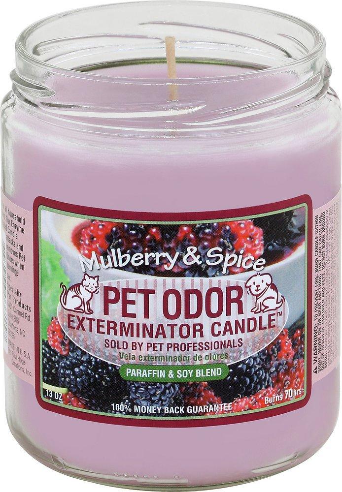 Pet Odor Exterminator Candle - Mulberry Spice