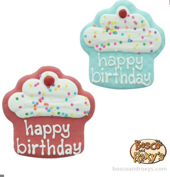 Bosco & Roxy's - Blue Birthday Collection Prepackaged Happy Birthday Cupcake