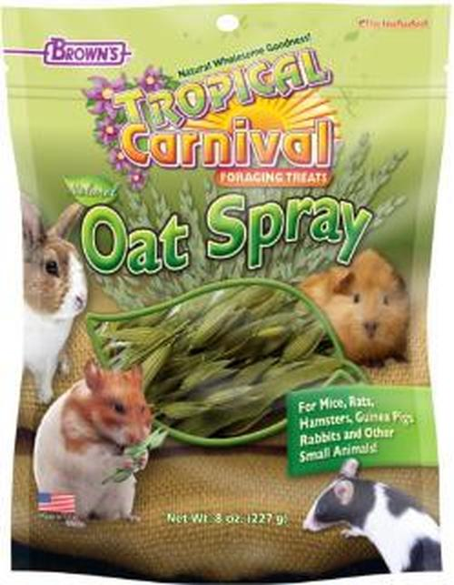 Brown's Tropical Carnival Oat Spray Small Animal Treats