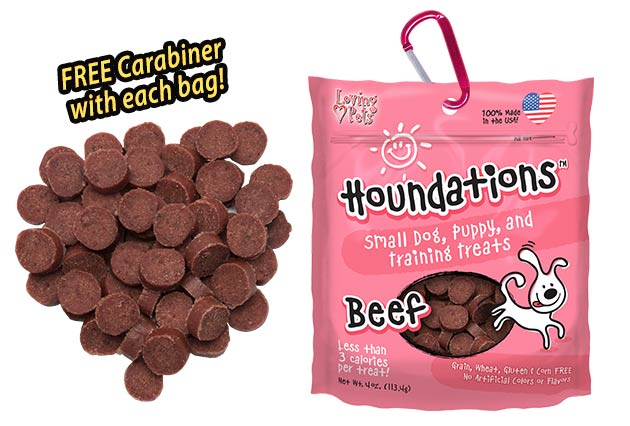 Loving Pets Houndations Beef Small Dog, Puppy, and Training Dog Treats, 4-oz