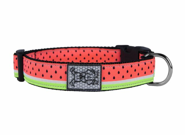 RC Pet Products Clip Watermelon Dog Collar