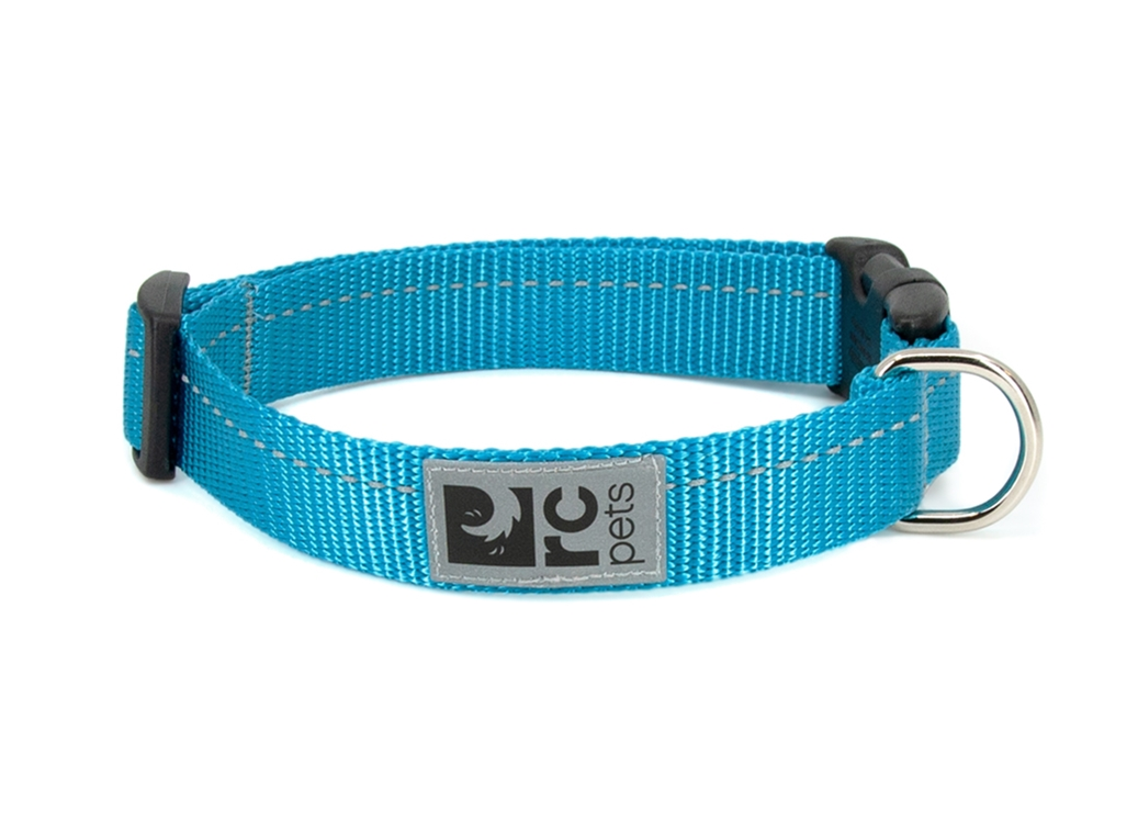 RC Pet Products Primary Clip Cyan Dog Collar