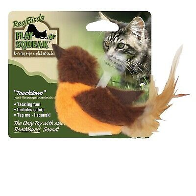 OurPets Play-N-Squeak Real Bird Touchdown Cat Toy