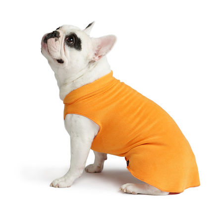 Gold Paw Stretch Fleece Pumpkin Orange Dog Coat, 2