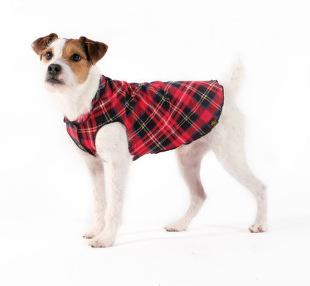 Gold Paw Stretch Fleece Red Tartan Dog Coat, 30