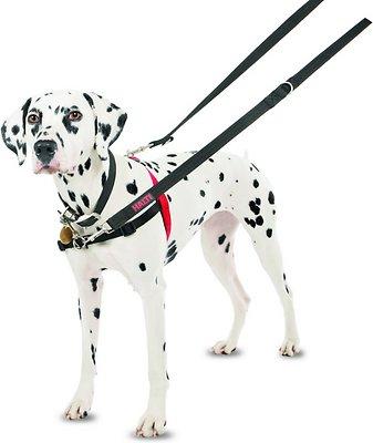 Halti Dog Harness, Black/Red