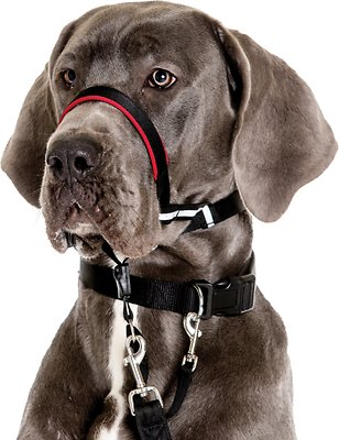Halti OptiFit Dog Headcollar