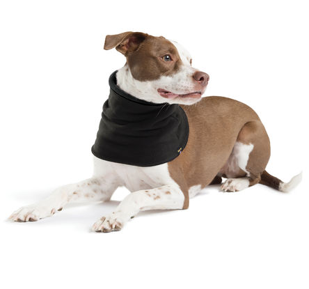 Gold Paw Dog Snood, Black/Black, Small