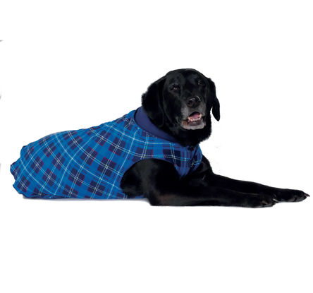 Gold Paw Duluth Double Fleece Dog Coat, Blue Plaid/Navy, 26