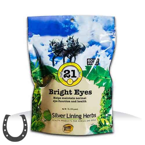 Silver Lining Herbs 21 Bright Eyes Horse Supplement, 1-lb