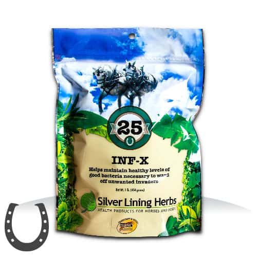 Silver Lining Herbs 25 Inf-X Horse Supplement
