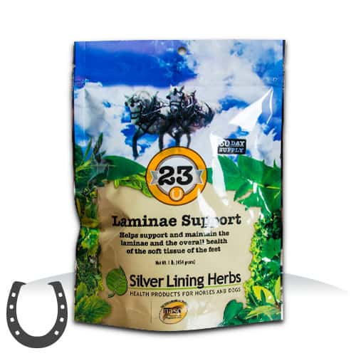 Silver Lining Herbs 23 Laminae Support Horse Supplement, 1-lb