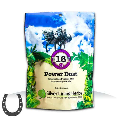 Silver Lining Herbs 16 Power Dust Horse Supplement, 1-lb