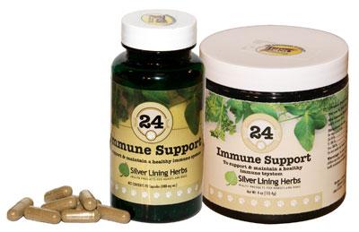 Silver Lining Herbs 24 Immune Support Powder Dog Supplement, 4-oz