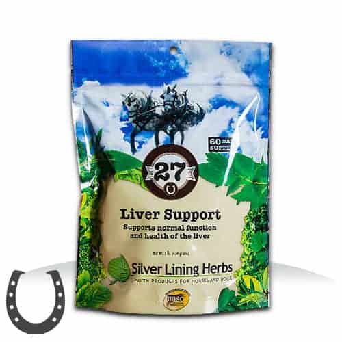 Silver Lining Herbs 27 Liver Support Horse Supplement, 1-lb