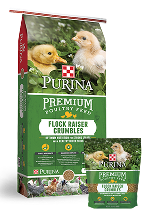 Purina Premium Poultry Feed Flock Raiser Crumbles Poultry Food, 50-lb