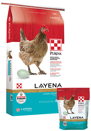 Purina Layena Crumbles Poultry Feed, 50-lb