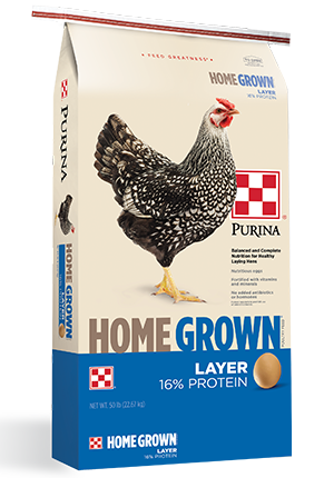 PurinaHome Grown Layer Crumbles Poultry Food, 50-lb