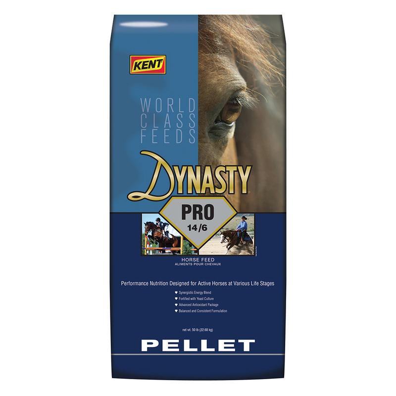 Kent Dynasty Pro 14/6 Pellet Horse Feed, 50-lb
