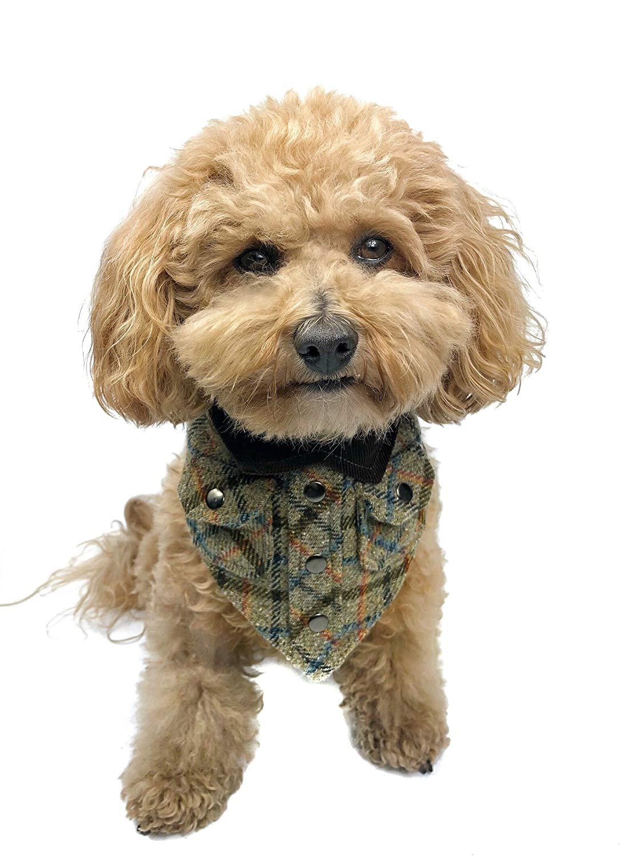 Tail Trends Lumberjack Cotton Dog Bandana, Log Jammer, Large