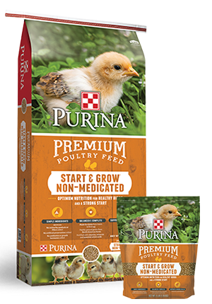 Purina Premium Start & Grow Non-Medicated Poultry Feed, 5-lb