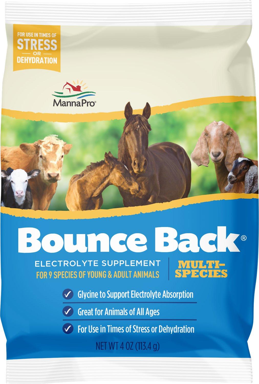 Manna Pro Bounce Back Multi-Species Livestock Supplement, 4-oz
