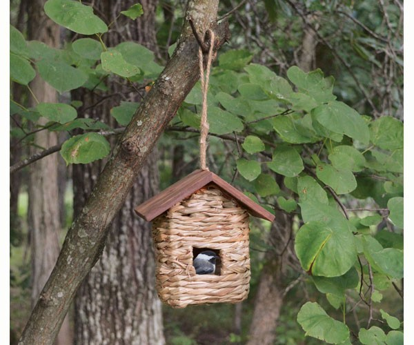 Songbird Essentials Hanging Grass Roosting Pocket with Roof Bird House