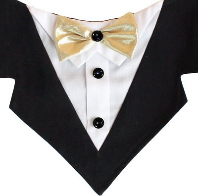 Tail Trends Mr. Darcy Tuxedo Formal Dog & Cat Bandana