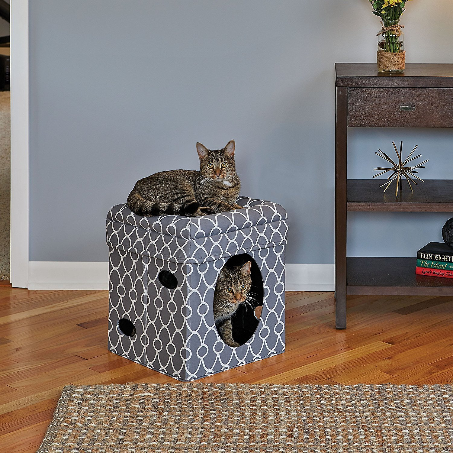 MidWest Curious Cat Cube, Geometric Gray