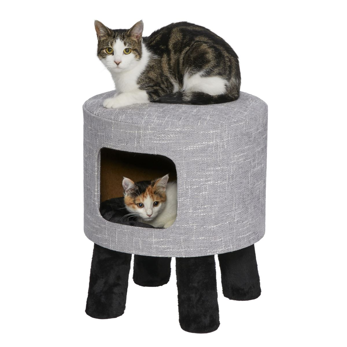 Midwest Feline Nuvo Stella for Cats