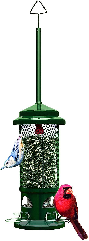 Brome Squirrel Buster Standard Bird Feeder