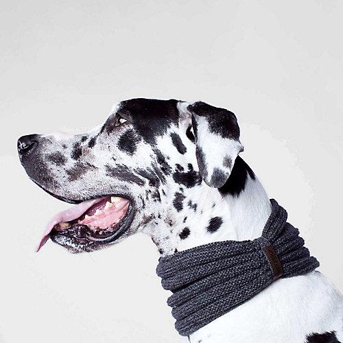 Canada Pooch Sierra Dog Scarf, Charcoal, Small
