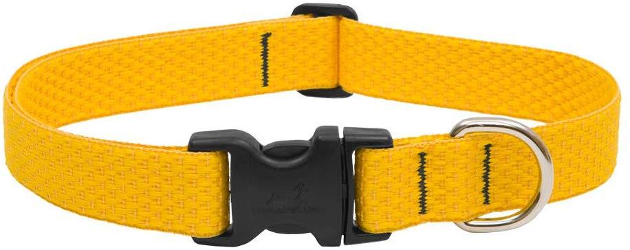 Lupine Pet Eco Adjustable Dog Collar, Sunshine, 3/4-in x 9-14-in