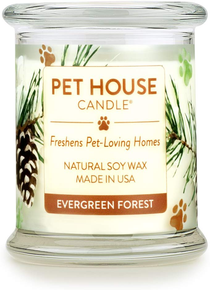 Pet House Evergreen Forest Natural Soy Candle, 8.5-oz