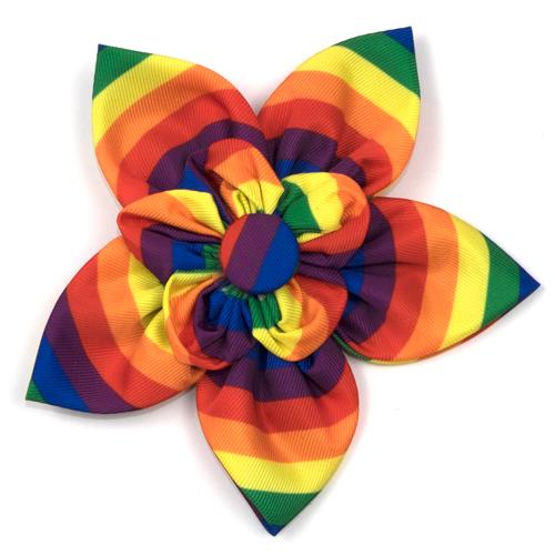 The Worthy Dog Collar Flower, Rainbow, Small
