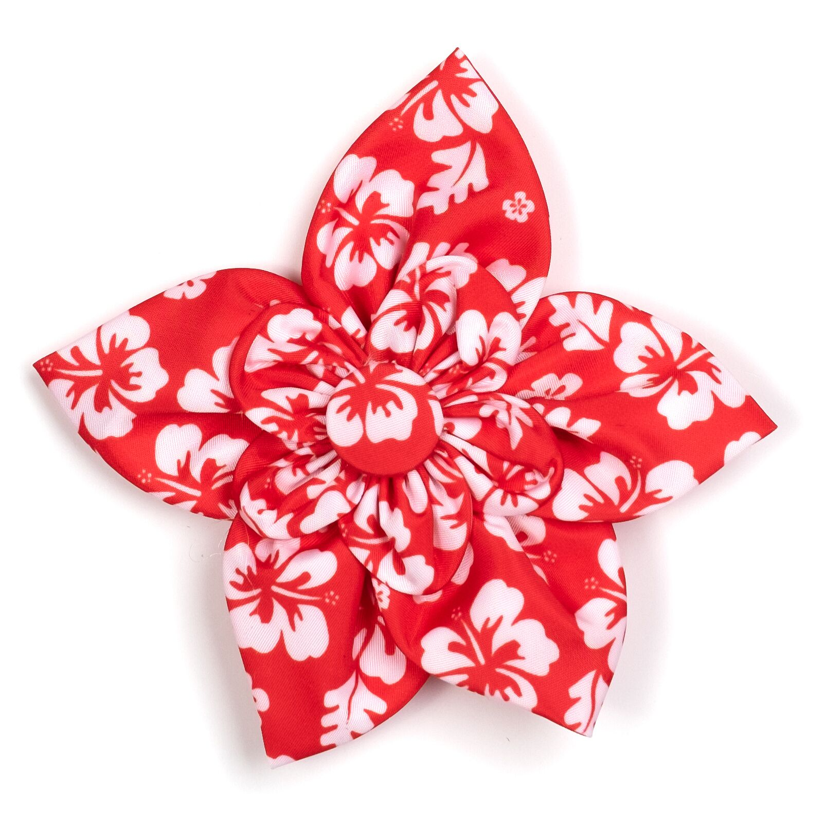 The Worthy Dog Collar Flower, Aloha Coral, Small