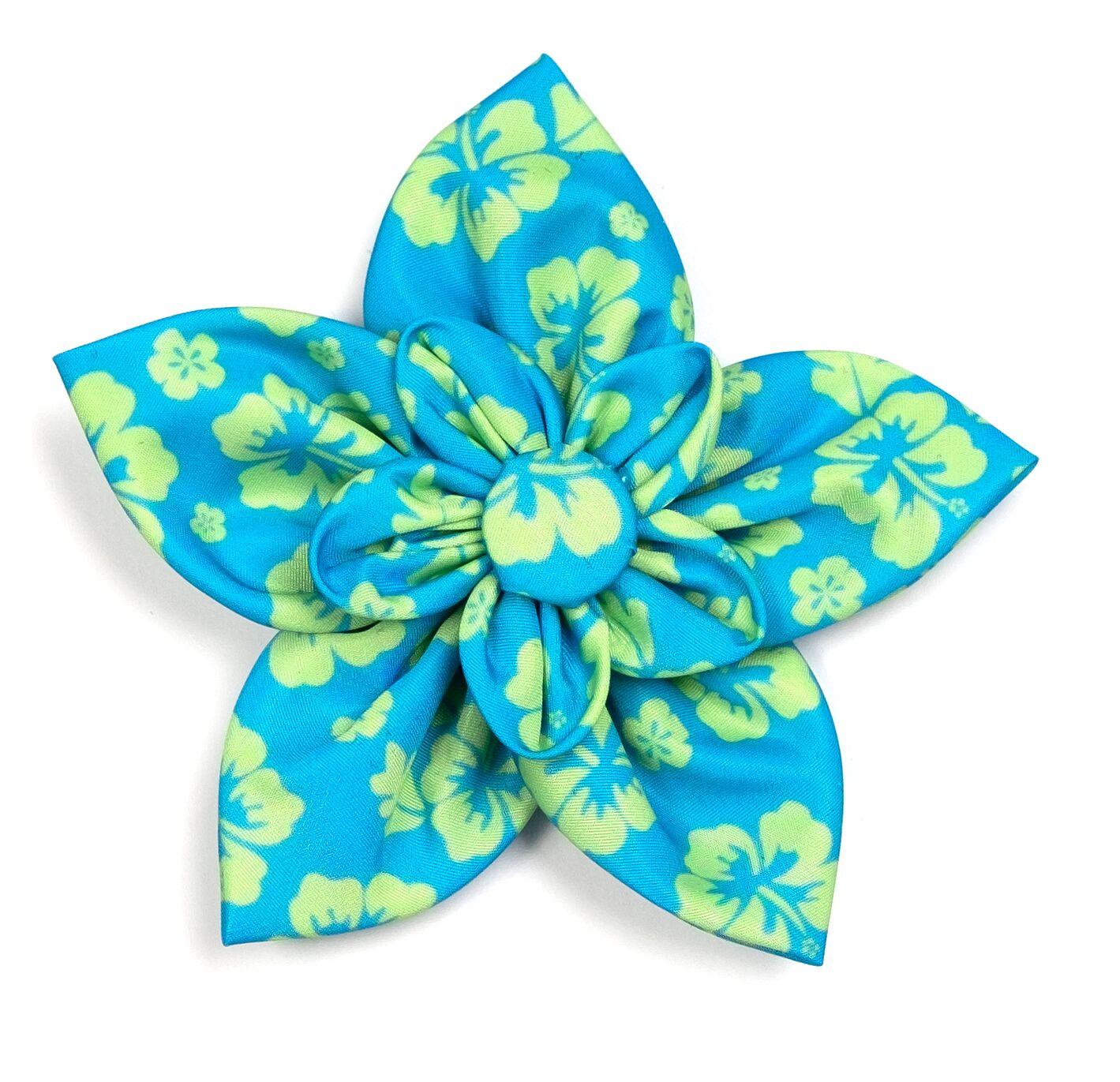 The Worthy Dog Collar Flower, Aloha Turq, Large