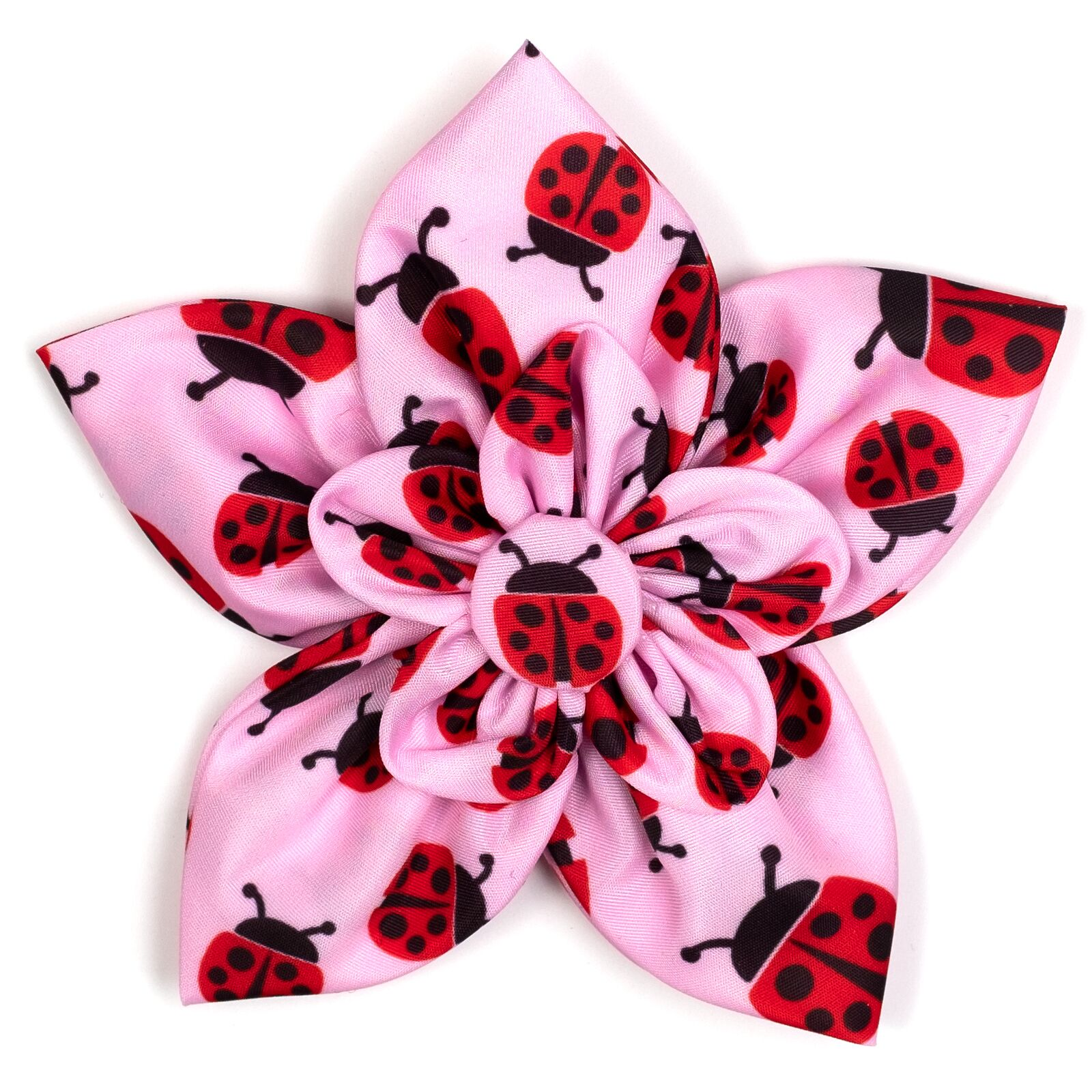 The Worthy Dog Collar Flower, Ladybugs, Large