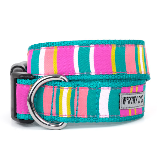 The Worthy Dog Collar, Fiesta Stripe, X-Small