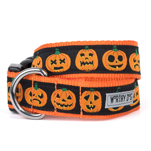 The Worthy Dog Collar, Jack-O'-Lantern, Medium