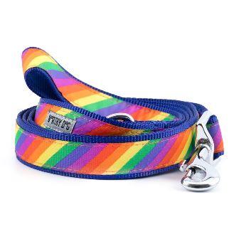 The Worthy Dog Leash, Rainbow, Large (1-in)